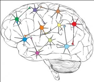 Neuronet Logo